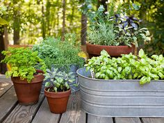 Transform inexpensive galvanized-steel washtubs into planters (don't forget to poke drainage holes in the bottom!). #upcycle