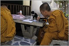 Le chaton jouant avec un moine Thaïlandais.