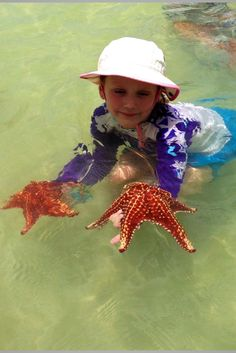 Starfish Beach Grand Cayman.  Charter a boat and take the kids!