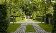 Green grass & cobblestone driveway.