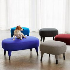 Cushioned stools named after studio dogs: http://www.dezeen.com/?p=653350 #design