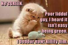 He's GREEN. http://cheezburger.com/9106577664