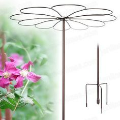 A strong umbrella stake for roses and vines