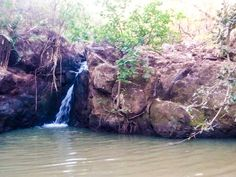 Panoramio - Photos by LATEHAR TOURISM