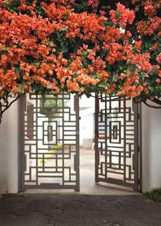 Entry | Open Lattice Doors | Tree Overhang