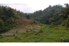 Dijual Tanah Murah di Dekat Ciater Subang (BU)