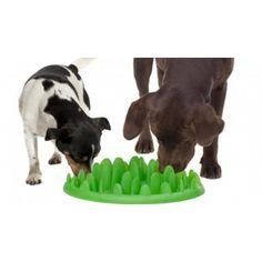 """NORTH GREEN MATE MINI is een speciaal ontworpen voerbak,in de vorm van een plukje gras, dat de maaltijd van uw hond in een uitdagend spel transformeert. Het voer wordt verspreid in NORTH GREEN MATE MINI, en het is de taak van uw hond om het voedsel te krijgen van de vele grassprietjes. NORTH GREEN MINI MATE verlengt de maaltijd - het maakt het moeilijk voor de hond, verhelpt het """"opslokken"""" van zijn voedsel en vermindert het risico van een opgeblazen gevoel. Het resultaat…"""