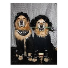 Golden Retriever Goth Style Postcard - diy cyo customize create your own personalize