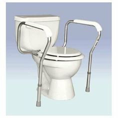 TOILET SAFETY RAIL B5040 1 EACH by ESSENTIAL MEDICAL ***. $47.93. Product DescriptionAmerica&rsquos #1 Facial Tissue. Tissue Type: Facial Number of Plies: 2 Number of Sheets: 95 per box.Unit of Measure : Pack