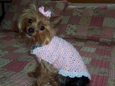 "Simply Darling  from ""ROSA BELLA'S CLOSET"" fashions for small dogs  Skill Level: Easy"