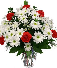 Strawberry Fields-This full and summery look of bright white daisies and vivid red carnations bring a juicy-fresh-summery feel to any day. Get Well Flowers, Red Carnation, Cat Flowers, Flowers Delivered, Strawberry Fields, Balloon Bouquet, Carnations, Daisies, Floral Arrangements