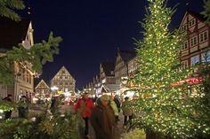 Celle am Abend: Weihnachtsmarkt in Grün