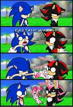Forget Shadow the hedgehog XD Sonic Funny, Sonic 3, Sonic And Amy, Sonic Fan Art, Shadow The Hedgehog, Sonic The Hedgehog, Sonic Fan Characters, Video Game Characters, Sonic Underground
