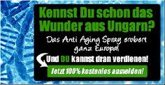 gelber Schein, Rustag1913 vor BRD GmbH - Schäbels Blog #schaebelsblog #schäbelsblog
