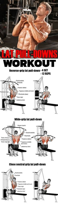 your back gets a tough enough workout! The lat pulldown exercise works th. Ensure your back gets a tough enough workout! The lat pulldown exercise works th.Ensure your back gets a tough enough workout! The lat pulldown exercise works th. Back Workout Program, Workout Programs, Good Back Workouts, Back Exercises, Weight Training Workouts, Gym Workouts, Lat Workout, Big Biceps Workout, Exercise Without Weights