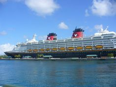Dining on the Disney Wonder | Tips from the Disney Divas and Devos