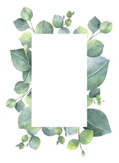 Watercolor green floral card with silver dollar eucalyptus leaves and branches isolated on white background. Illustration about herbal, decoration, green, eucalyptus - 86565807 Flower Wallpaper, Wallpaper Backgrounds, Iphone Wallpaper, Phone Backgrounds, Watercolor Card, Green Watercolor, Watercolor Leaves, Fond Design, Flower Frame