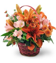 Find a wide selection of funeral & sympathy flowers at Happy Flowers. Flower Basket, Flower Boxes, My Flower, Happy Flowers, Fall Flowers, Beautiful Flowers, Basket Flower Arrangements, Fall Arrangements, Flower Boutique