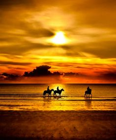 Horseback Riding at Sunset in the Ocean