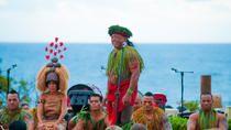 Chief's Luau at Sea Life Park