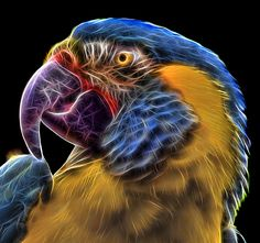 animal fractal - Buscar con Google