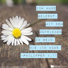 Nachzulesen auf BibleServer   Philipper 4,11