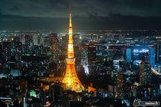 Tokyo | Tour de Tokyo | La Nuit | Totoro Times