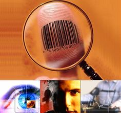 How to do a free online background check Online Background Check, Money, Silver