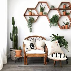 Do you love this from leafandpaige - can you recognize the aerial plants , , . - HOME SWEET HOME - - - Interior Design Living Room, Living Room Designs, Salon Interior Design, Interior Livingroom, Bedroom Designs, Wicker Patio Chairs, Chair Cushions, Room Chairs, Couch Pillows