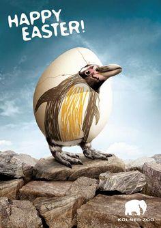 PC - Publicidad Creativa XII: Pascua