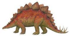 stegosaurus pictures - Google Search