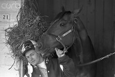 Before a life-altering tragedy, Canadian Ron Turcotte won the Triple Crown aboard Secretariat. Now, 41 years later, he returns to Belmont, hoping to witness history. All The Pretty Horses, Beautiful Horses, Animals Beautiful, Saratoga Horse Racing, The Great Race, Triple Crown Winners, American Pharoah, Thoroughbred Horse, Clydesdale Horses