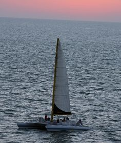 Sun beginning to set behind the Kai Lani Catamaran off Clearwater Beach