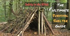 Safety in the Wild: The Ultimate Survival Shelter Guide | Prepper Universe