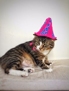 Crochet Birthday Cap Cat Dog Hat Unique Handmade Pink Blue Pet