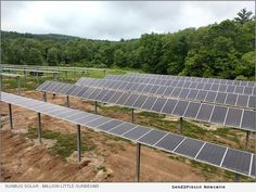 Technology Meets Tradition on A Monson Family Farm Source: SunBug Solar Energy Consulting, Types Of Honey, National Grid, Energy News, Solar Solutions, Agricultural Land, Photo Caption, Tracking System, Photo Link