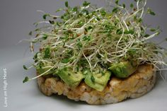 sprouts & avocado on a rice cake