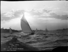 """Evening"", Sydney Harbour (9014721630).jpg"