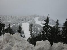 Grouse Mountain  #PotentialistCanada