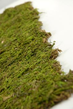 """Preserved Natural Moss Mat (18""""  x 16"""")  $7 each / 3 for $6 each....my boss and I just used this stuff recently and made moss candles for a bride! They turned out GREAT!"""