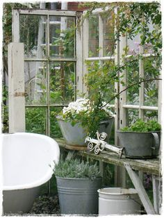 Tub, zinc containers, table, old windows all great in the garden!