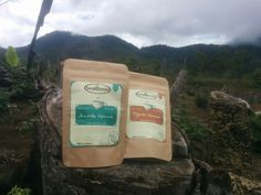 beskabean coffee, semendo arabika and Semendo Robusta in south sumatera coffee.