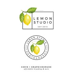 Lemon Logo Design Photography Logo Lemon Design Modern Branding Blog Branding