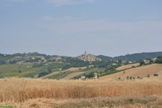 country in the Piceno' s area  #piceno #lemarche #italy