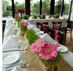 Hot Pink Gerber Daisy and Green Grass Centerpieces
