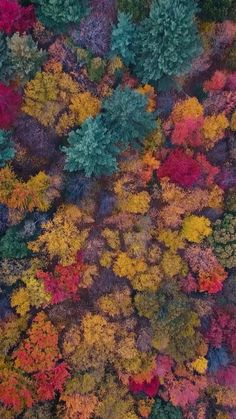 christianschaffer on Instagram: fall colors from above 🍁 #reels #autumn #eastcoast