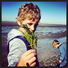Schat zoeken bij Eemshaven Groningen...