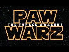 Star Wars: The Force Awakens Trailer, As Told By Puppies And Kittens - BarkPost