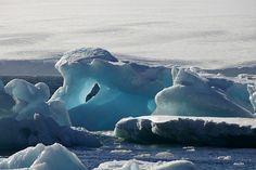Paulette Landing, Antarctica, 2005