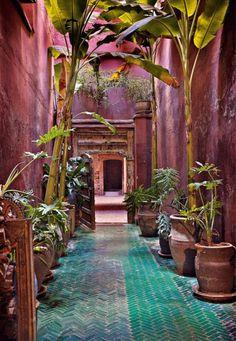 Dar un toque exotico y original, a nuestro pasillo de patio interior de nuestra casa, me gusta!!!!